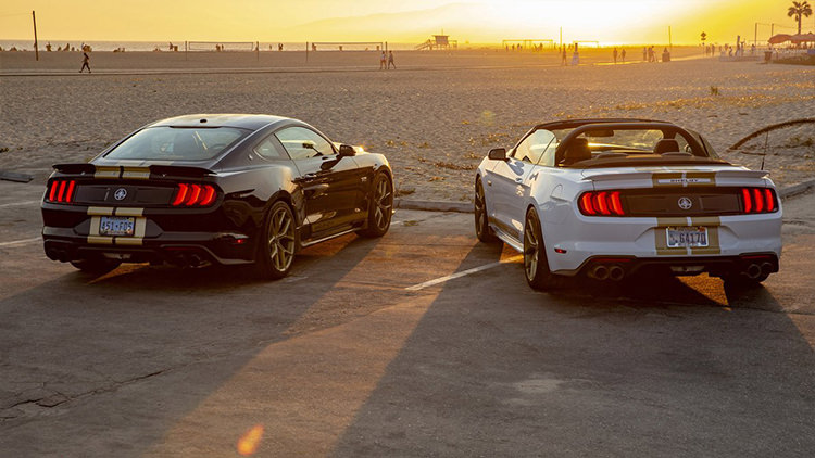 Mustang Shelby GT 2019